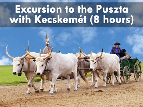 Excursion to the Great Hungarian Plain (Puszta) with Kecskemét